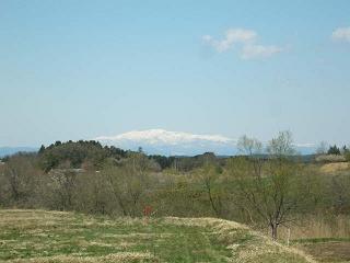 20100529-01.jpg